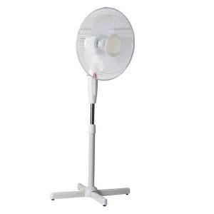 Lex Standing fan